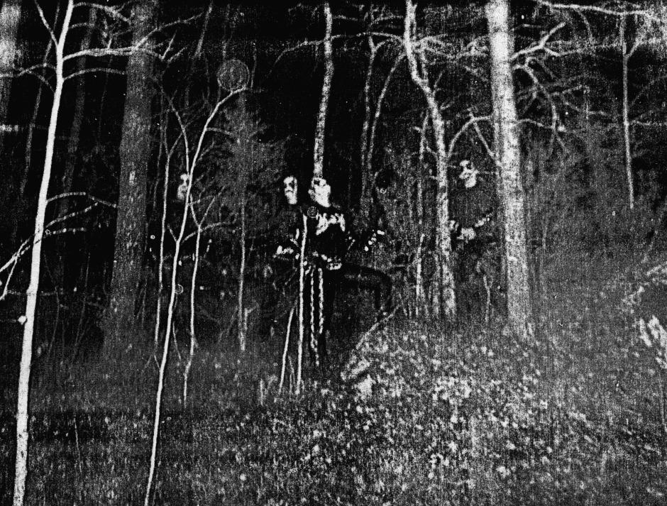 forests horde